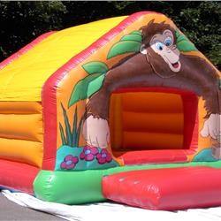 Buy Party Bounce Online
